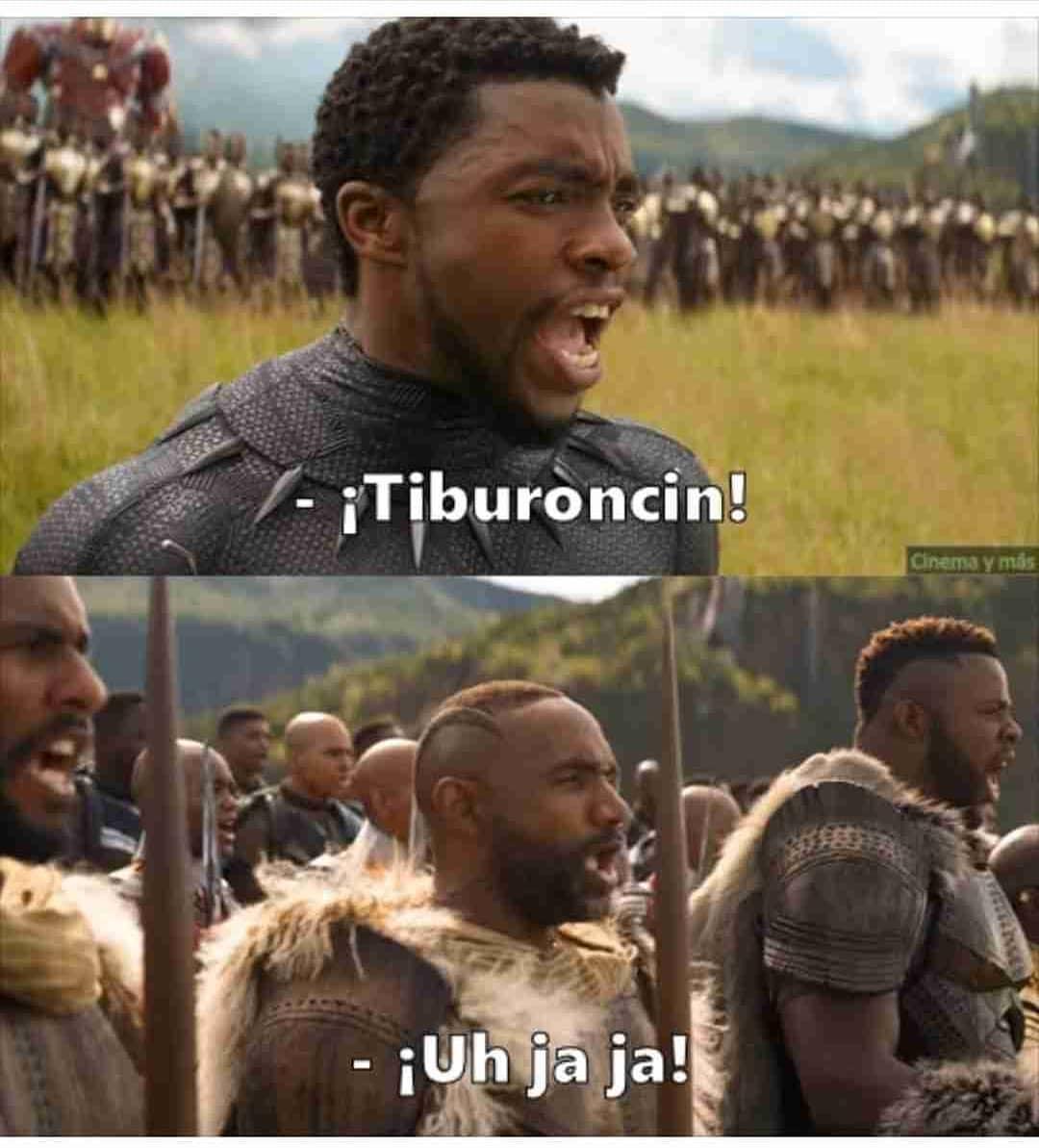 ¡Tiburoncin! ¡Uh jaja!