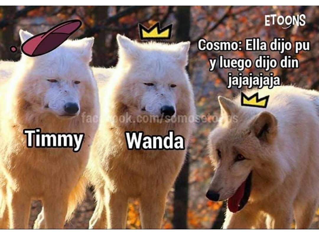 Timmy. Wanda.  *Cosmo: Ellá dijo pu y luego dijo din jajajajaja.