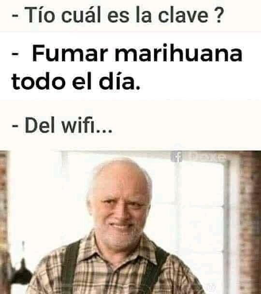 - Tío cuál es la clave?  - Fumar marihuana todo el día.  - Del wifi...
