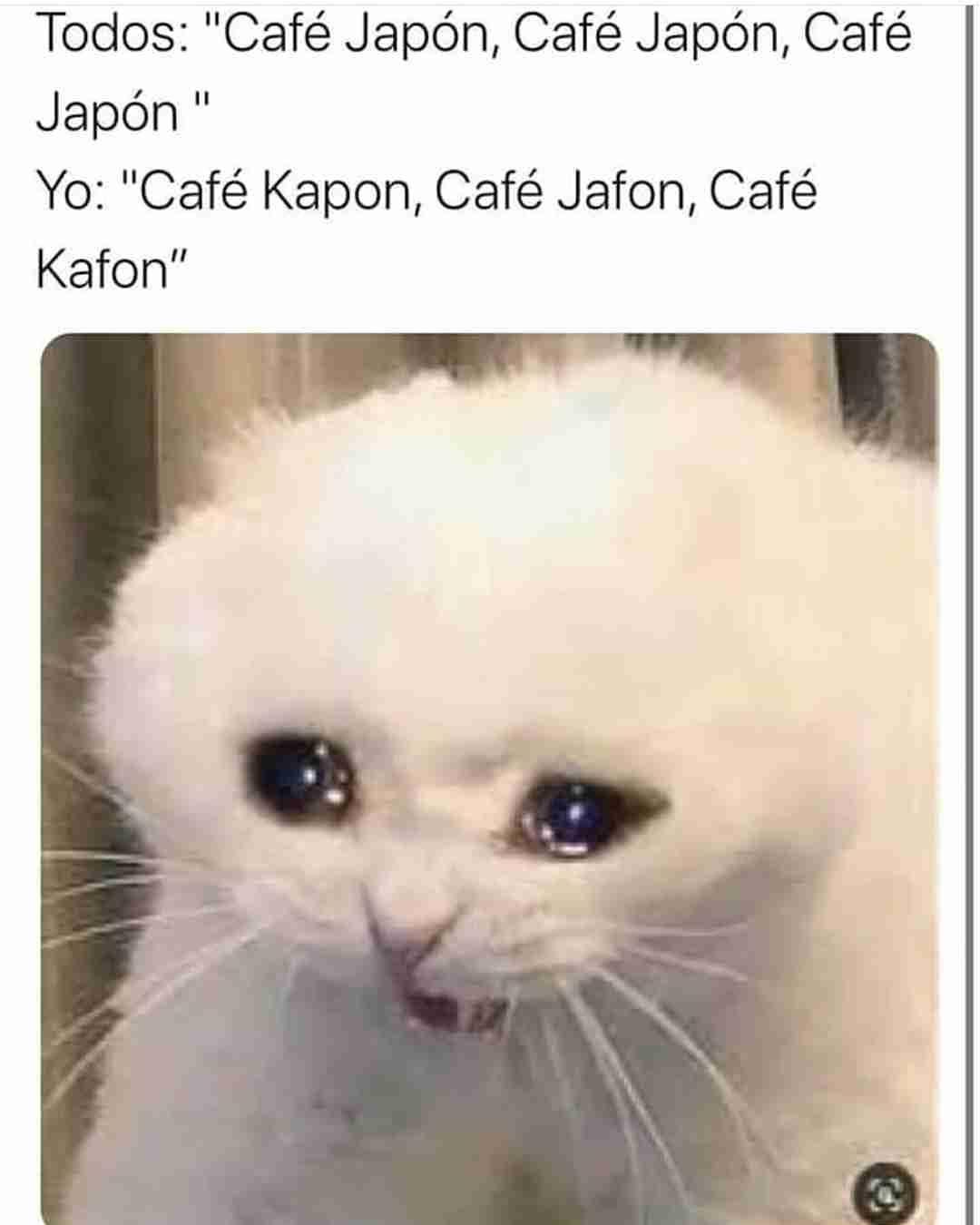 "Todos: ""Café Japón, Café Japón, Café Japón.  Yo: ""Café Kapon, Café Jafon, Café Kafon""."