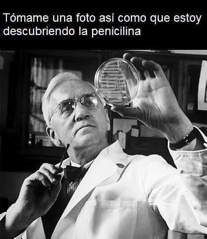 Tómame una foto así como que estoy descubriendo la penicilina.