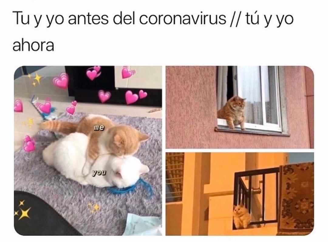 Tu y yo antes del coronavirus. // Tú y yo ahora.