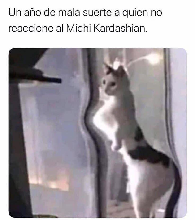 Un año de mala suerte a quien no reaccione al Michi Kardashian.