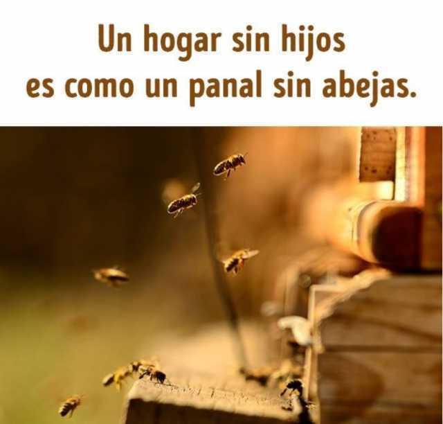 Un hogar sin hijos es como un panal sin abejas.