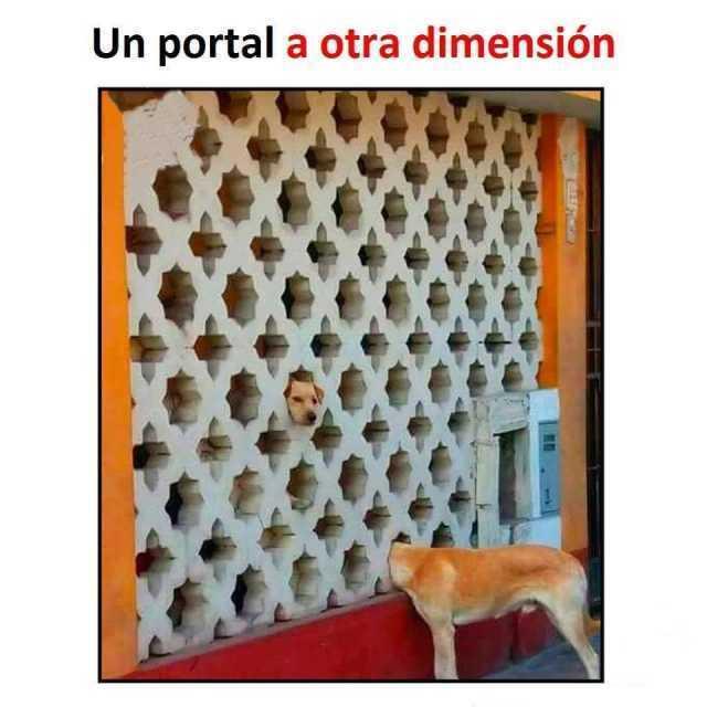 Un portal a otra dimensión.