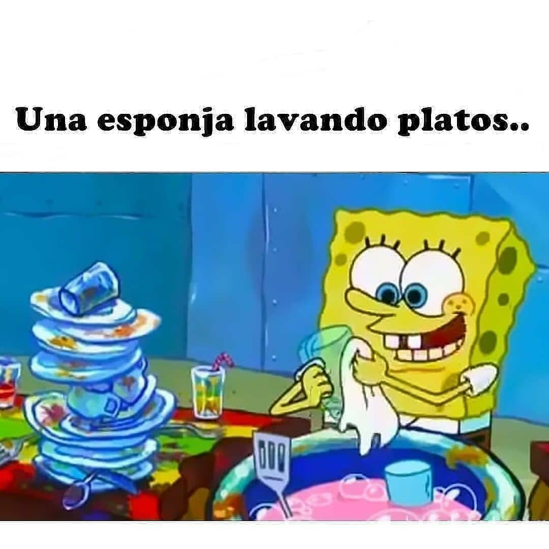 Una esponja lavando platos..