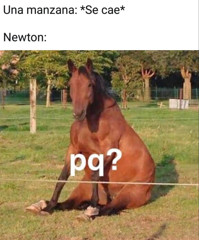 Una manzana: *Se cae*  Newton: pq?