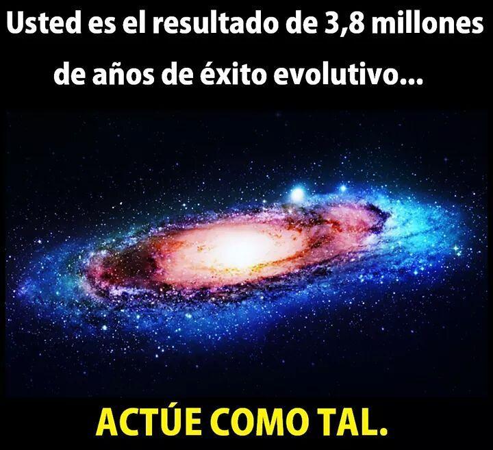 Usted es el resultado de 3,8 millones de años de éxito evolutivo... Actúe como tal.