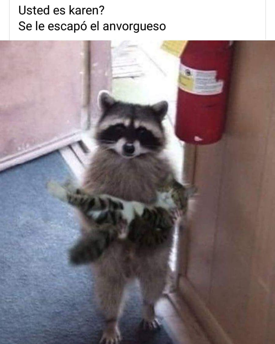 Usted es Karen? Se le escapó el anvorgueso.