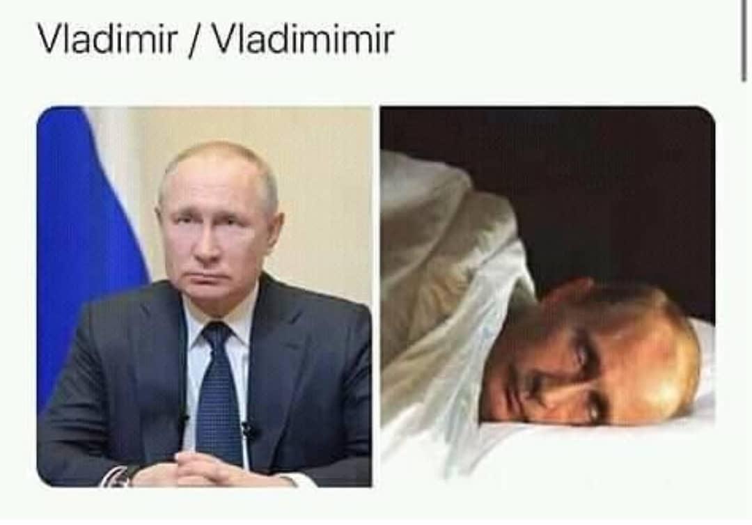 Vladimir. / Vladimimir.