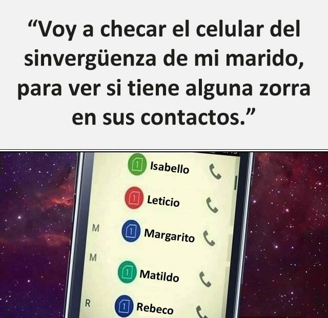 """""""Voy a chegar el celular del sinvergüenza de mi marido, para ver si tiene alguna zorra en sus contactos.""""  Isabello, Leticio, Margarito, Matildo, Rebeco"""