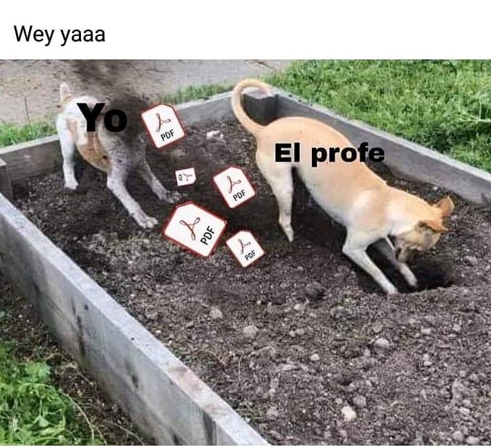Wey yaaa. El profe.