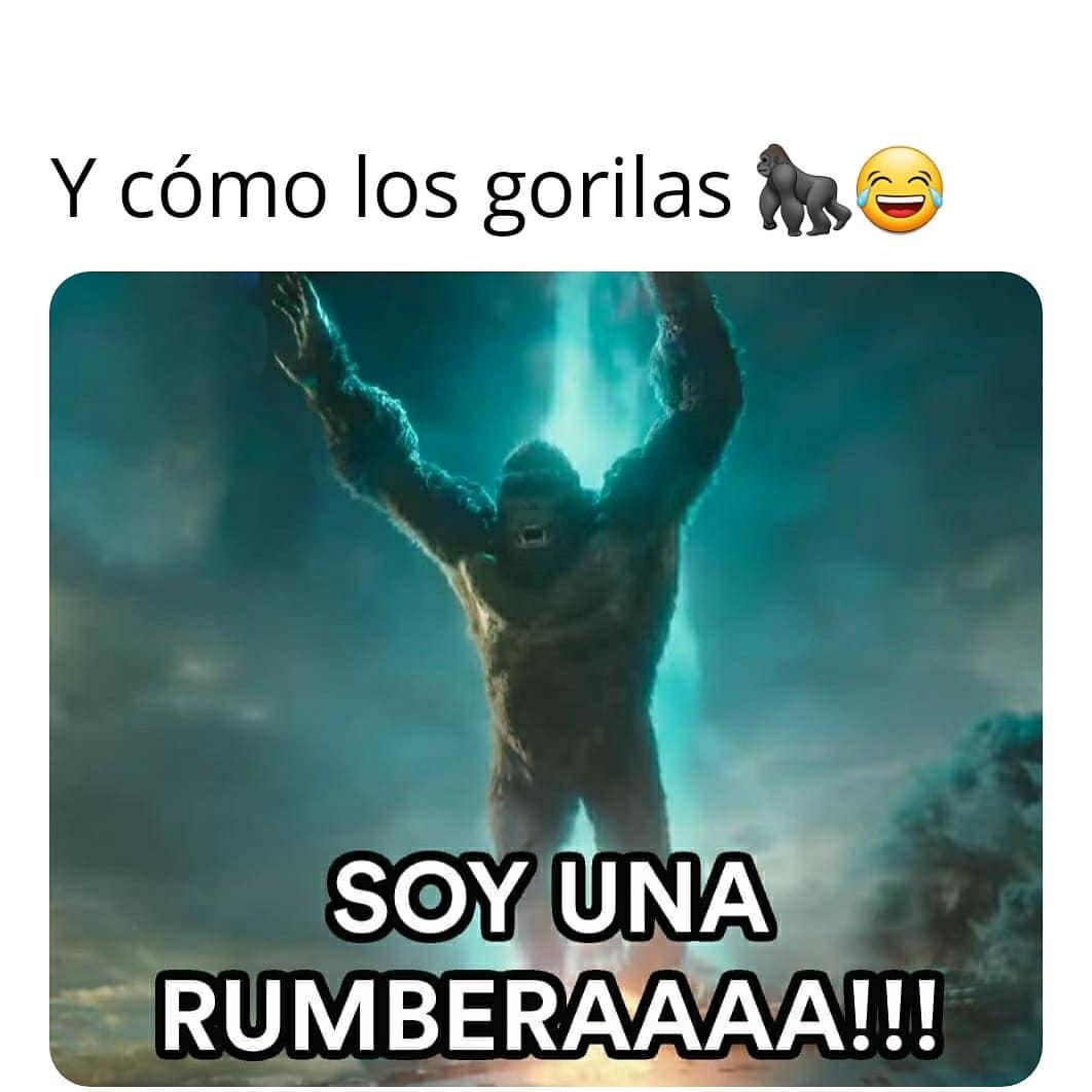 y cómo los gorilas, soy una rumberaaaa!!!