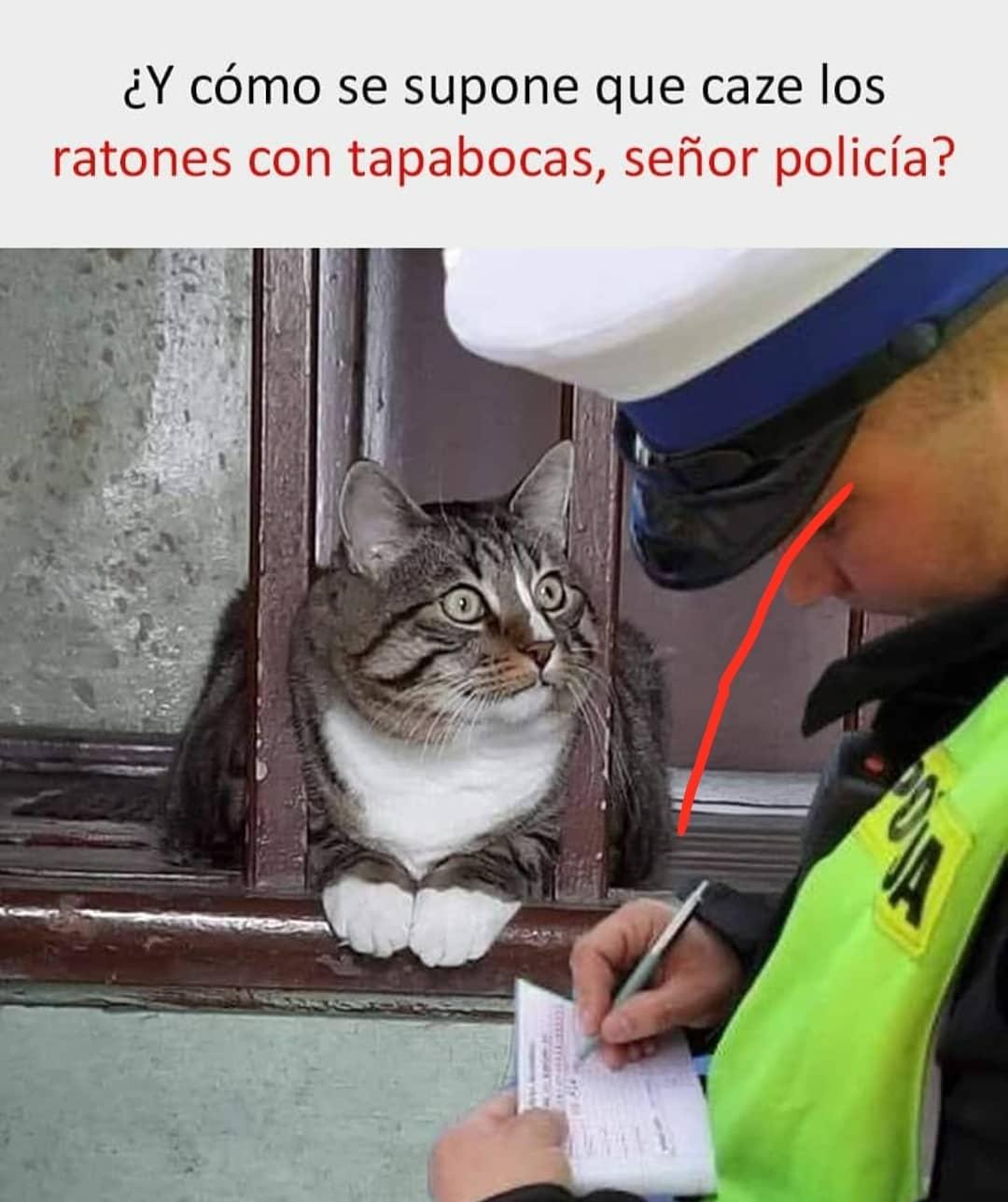 ¿Y cómo se supone que caze los ratones con tapabocas, señor policía?