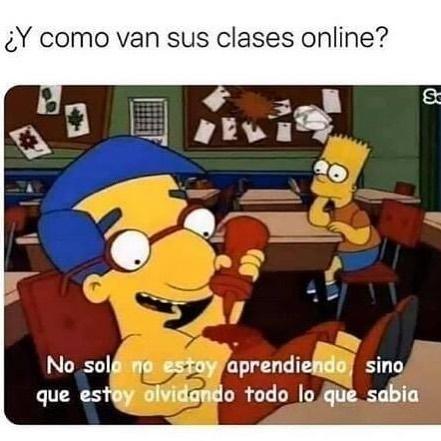 ¿Y como van sus clases online?  No solo no estoy aprendiendo, sino que estoy olvidando todo lo que sabía.