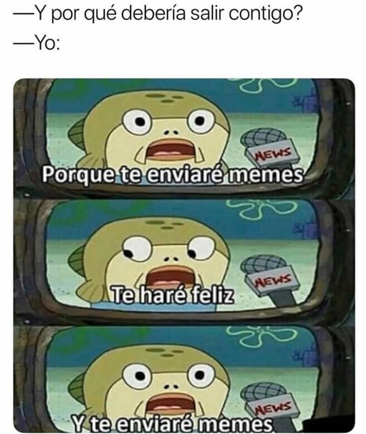 Y por qué debería salir contigo?  Yo: Porque te enviaré memes. Te haré feliz. Y te enviaré memes.