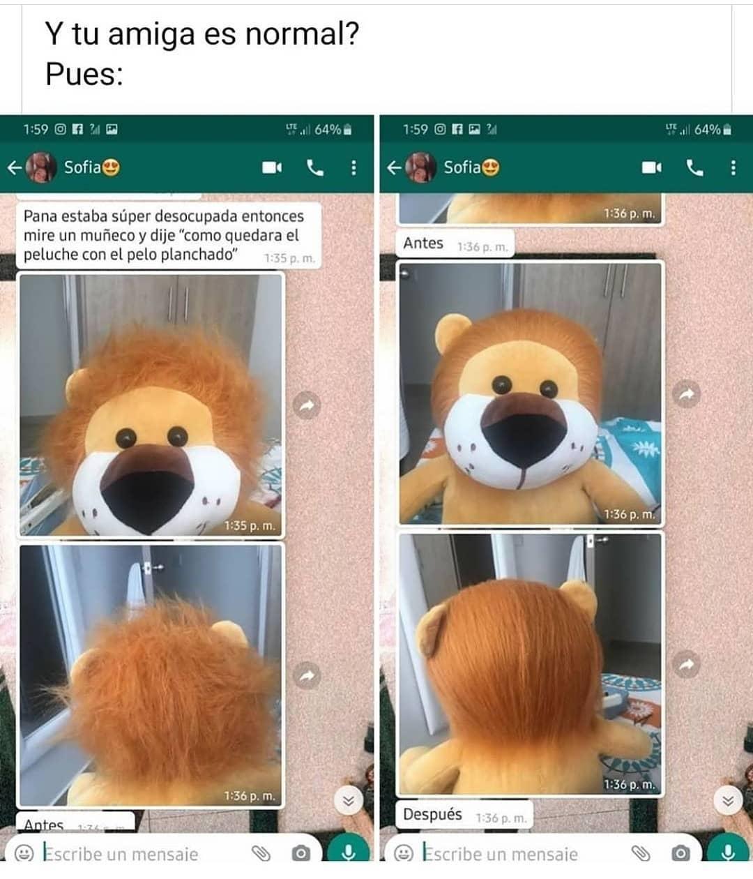"""Y tu amiga es normal? Pues: Pana estaba súper desocupada entonces miré un muñeco y dije """"como quedará el peluche con el pelo planchado""""."""