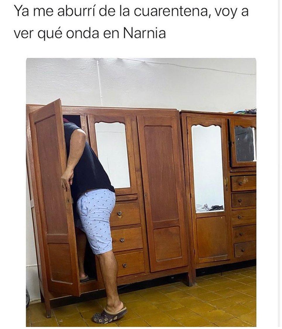 Ya me aburrí de la cuarentena, voy a ver qué onda en Narnia.