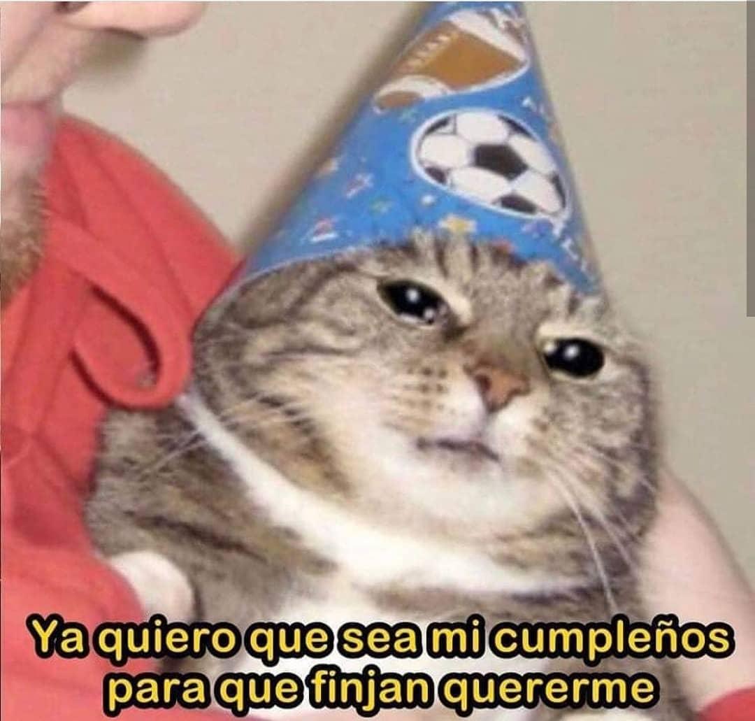 Ya quiero que sea mi cumpleaños para que finjan quererme.