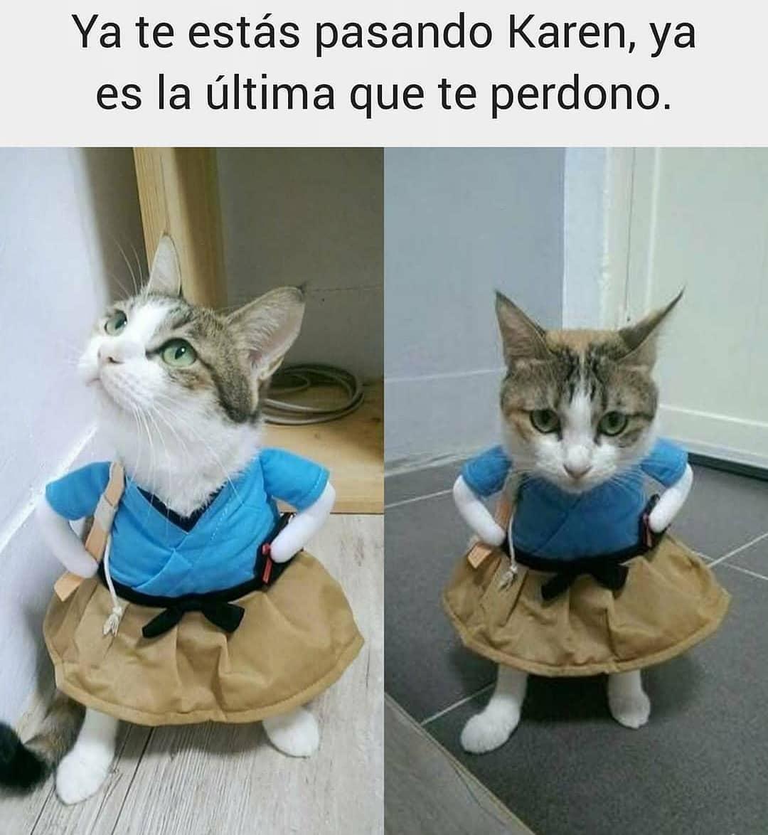 Ya te estás pasando Karen, ya es la última que te perdono.