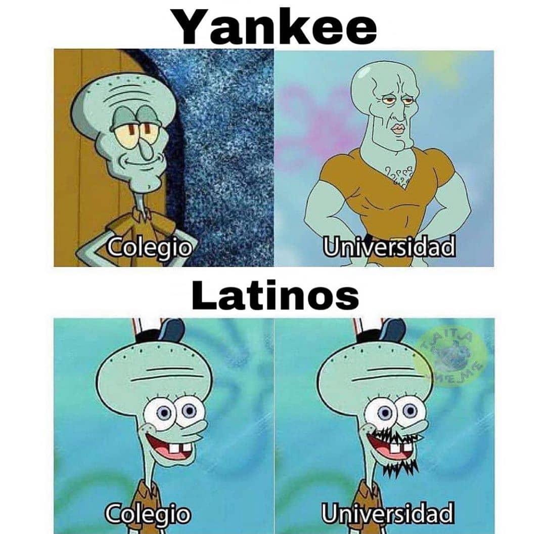 Yankee: Colegio. Universidad.  Latinos: Colegio. Universidad.