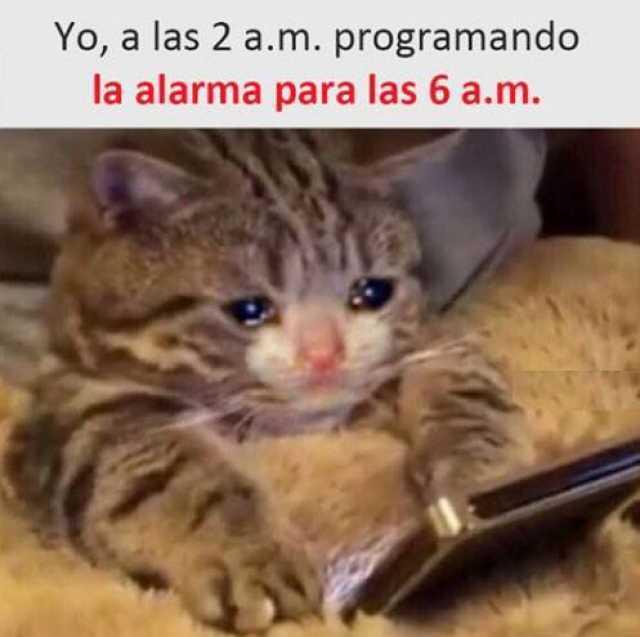 Yo, a las 2 a.m. programando la alarma para las 6 a.m.