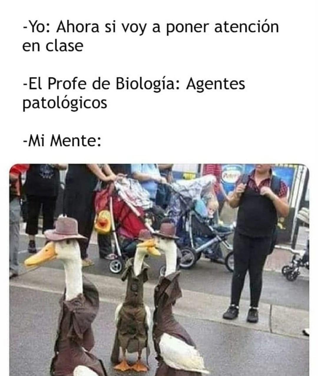 Yo: ahora sí voy a poner atención en clase.  El profe de biología: agentes patológicos.  Mi mente: