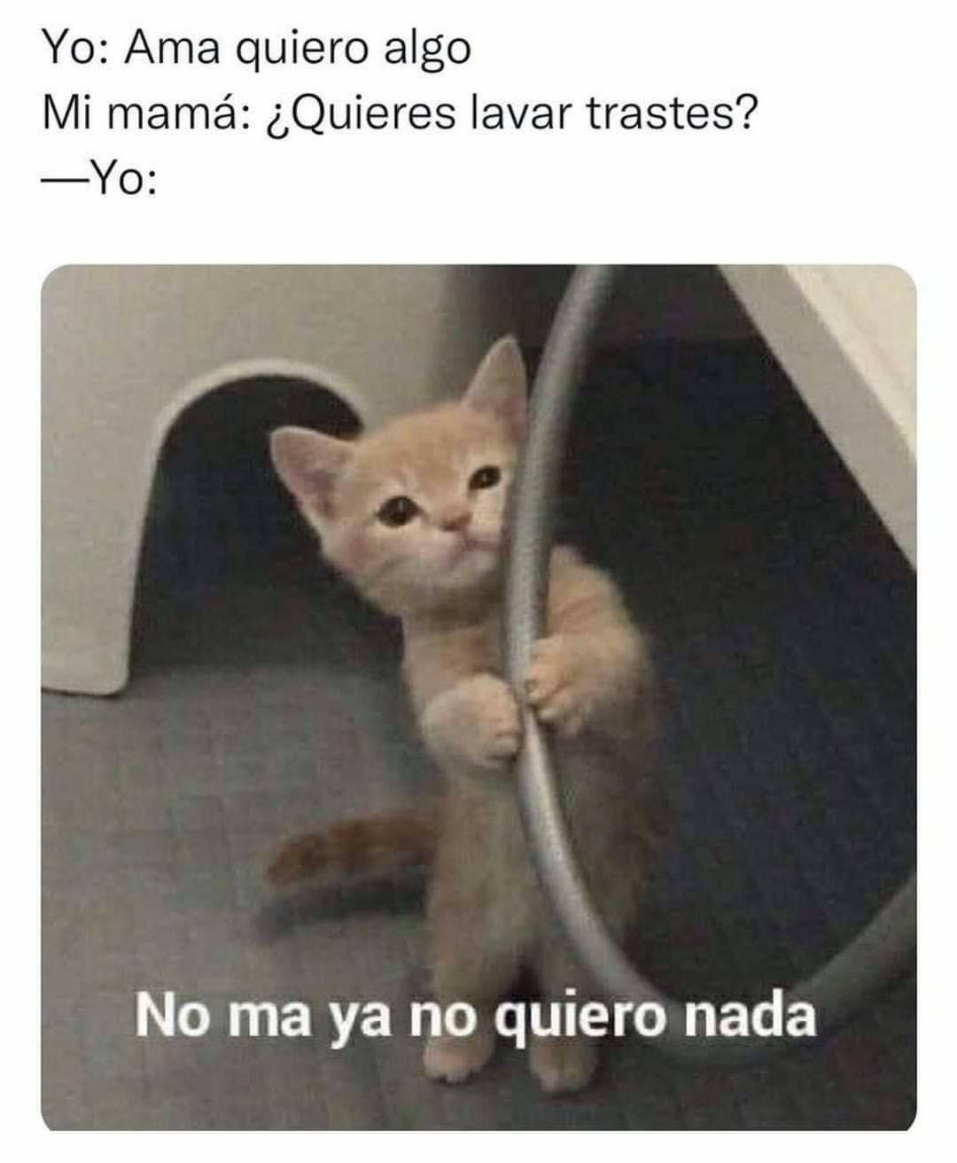 Yo: Amá, quiero algo.  Mi mamá: ¿Quieres lavar trastes?  Yo: No ma ya no quiero nada.