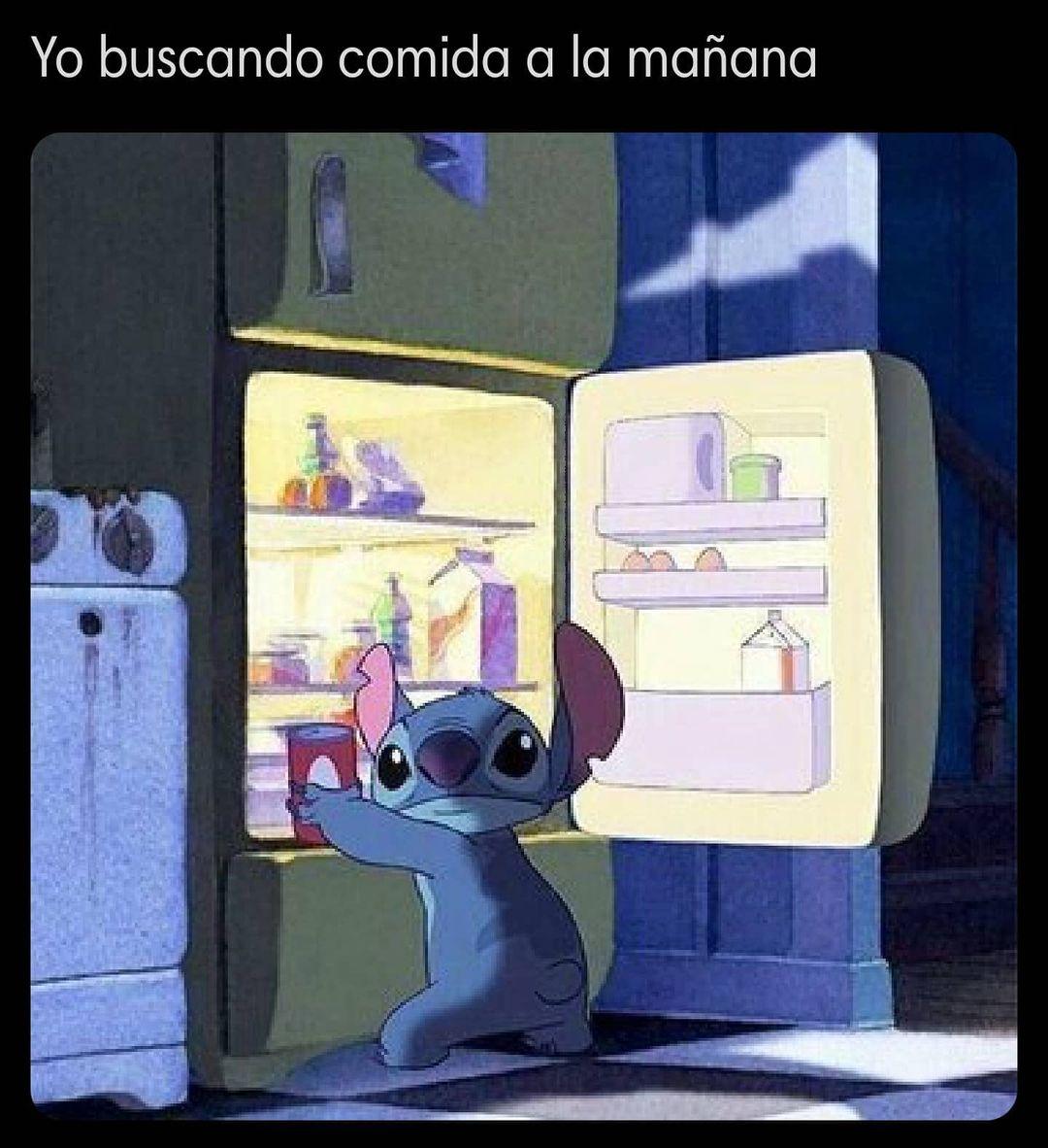 Yo buscando comida a la mañana.