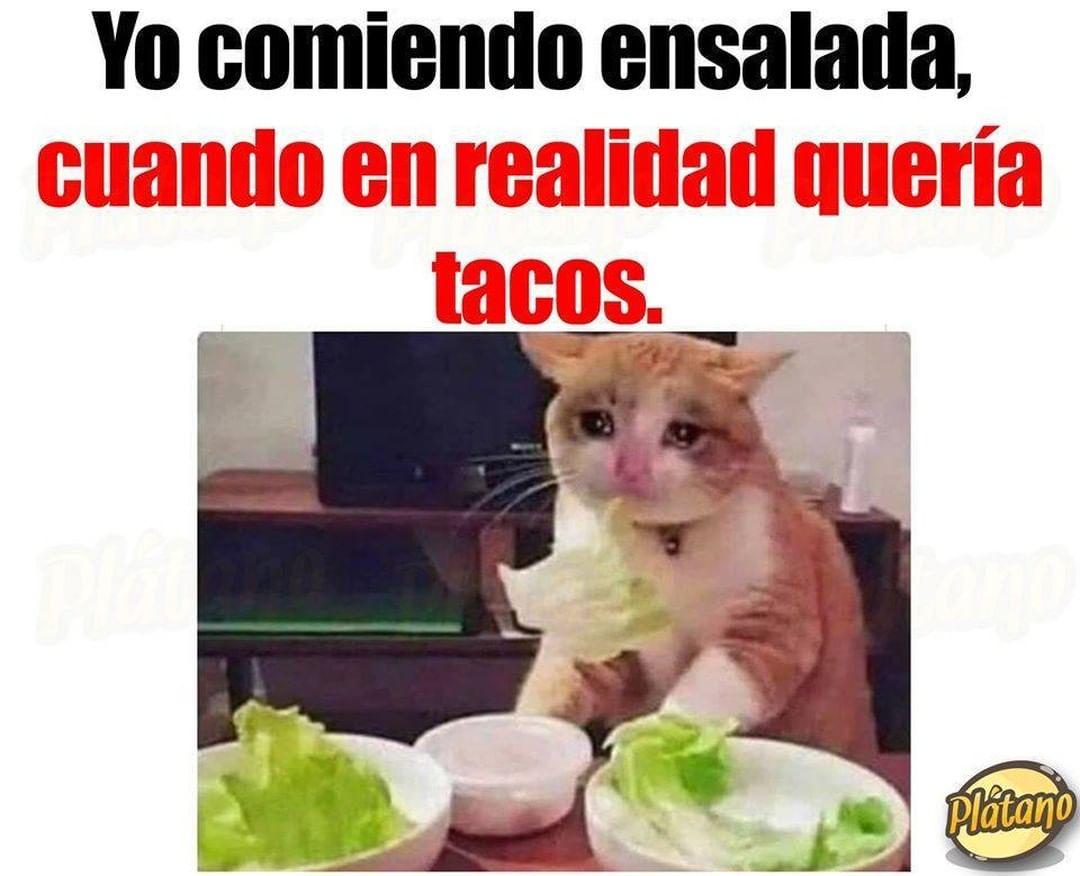 Yo comiendo ensalada, cuando en realidad quería tacos.