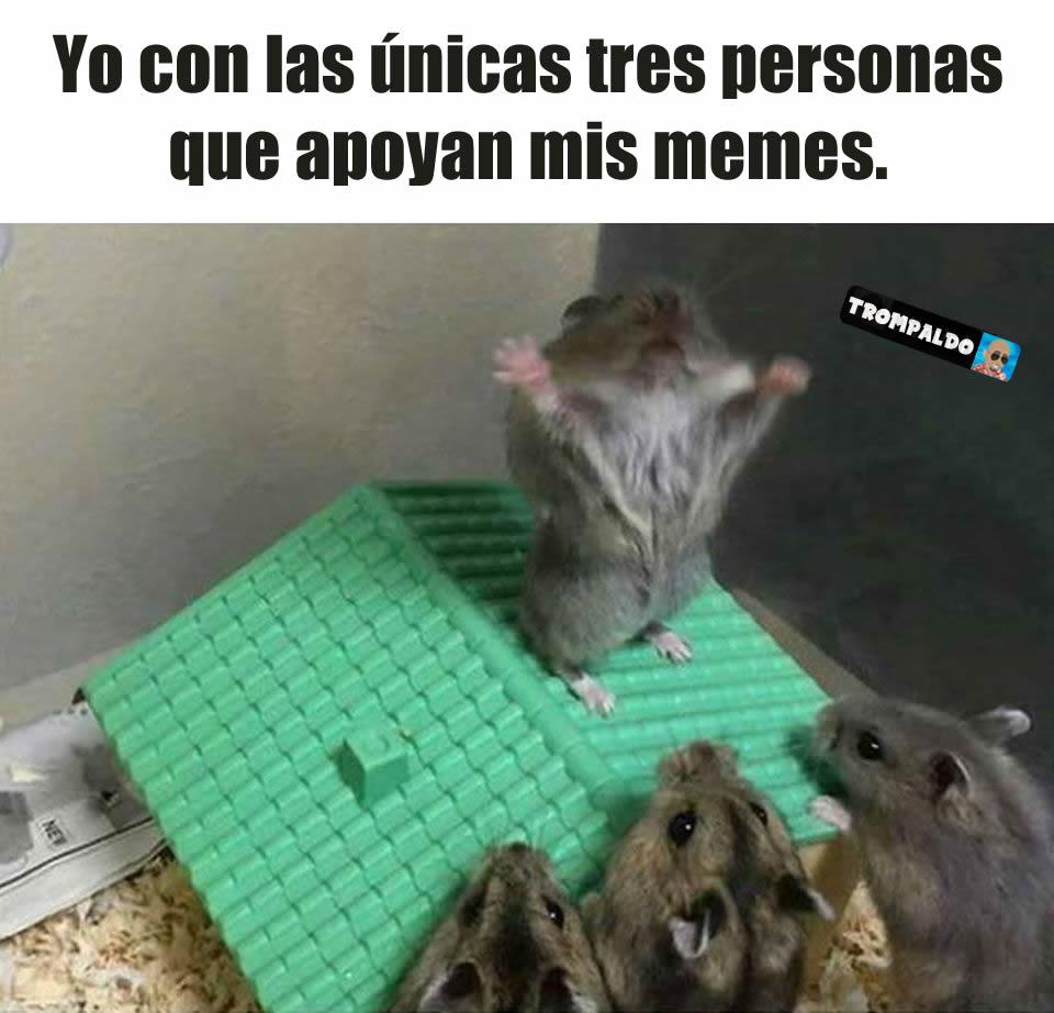 Yo con las únicas tres personas que apoyan mis memes.