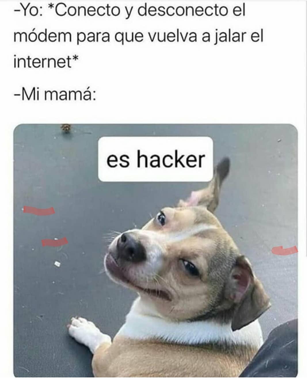 Yo: *Conecto y desconecto el módem para que vuelva a jalar el internet*  Mi mamá: es hacker.