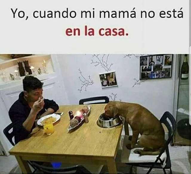 Yo cuando mi mamá no está en la casa.