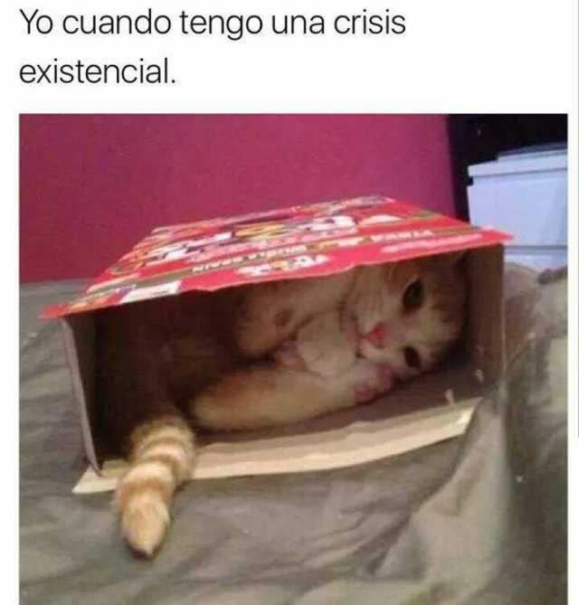 Yo cuando tengo una crisis existencial.