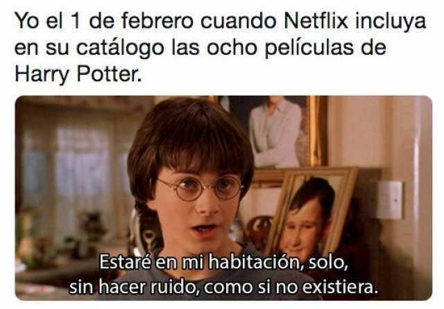 Yo el 1 de febrero cuando Netflix incluya en su catálogo las ocho películas de Harry Potter.  Estaré en mi habitación, solo, hacer ruido, como si no existiera.