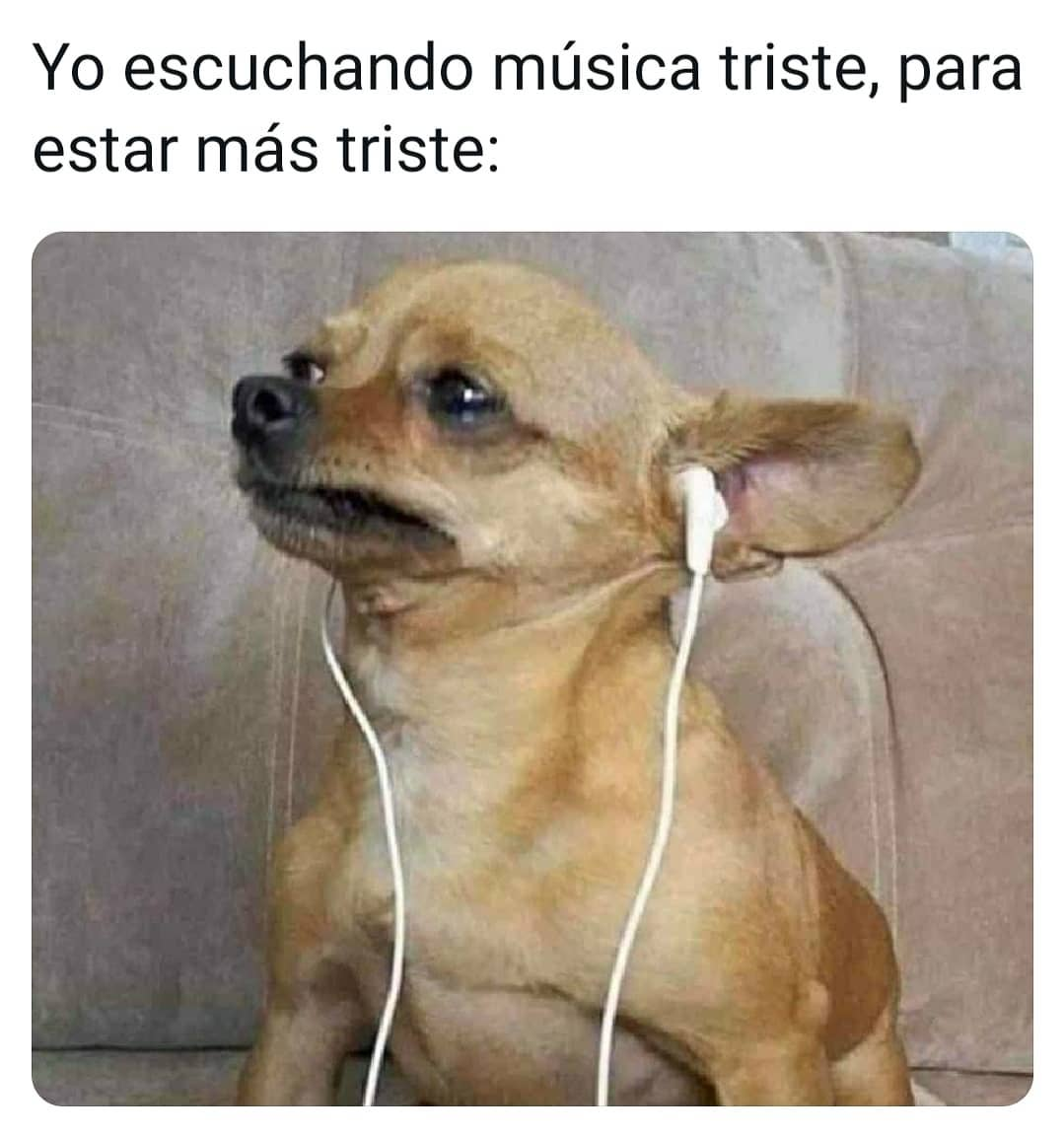 Yo escuchando música triste, para estar más triste: