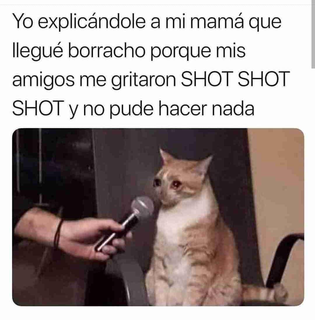 Yo explicándole a mi mamá que llegué borracho porque mis amigos me gritaron shot shot shot y no pude hacer nada.