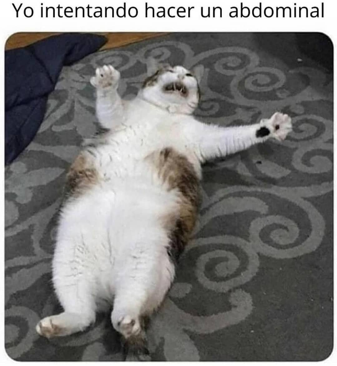 Yo intentando hacer un abdominal.