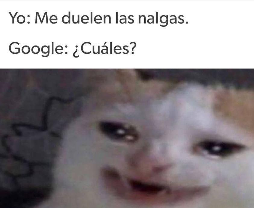 Yo: Me duelen las nalgas.  Google: ¿Cuáles?