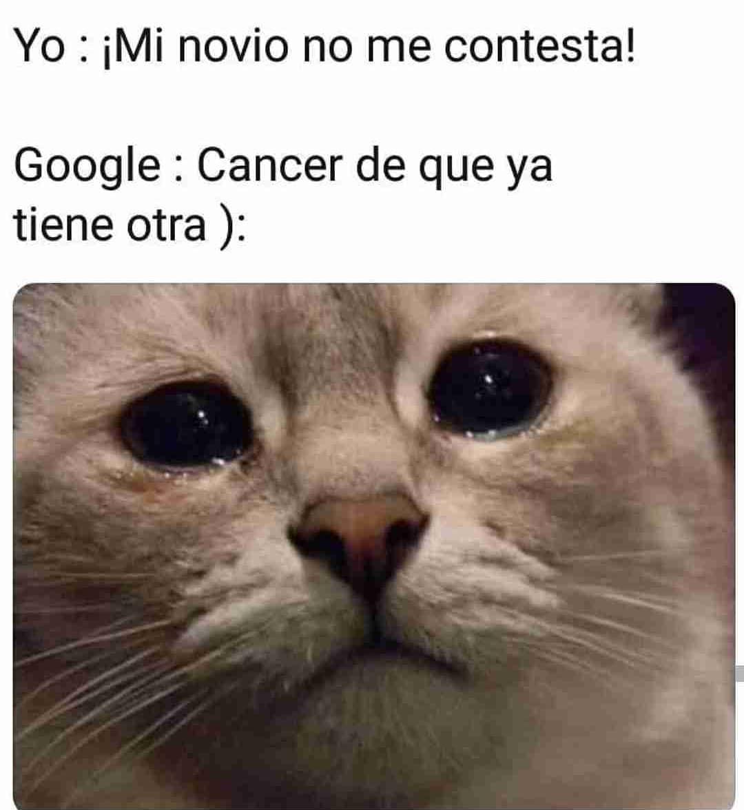 Yo: ¡Mi novio no me contesta!  Google: Cáncer de que ya tiene otra.