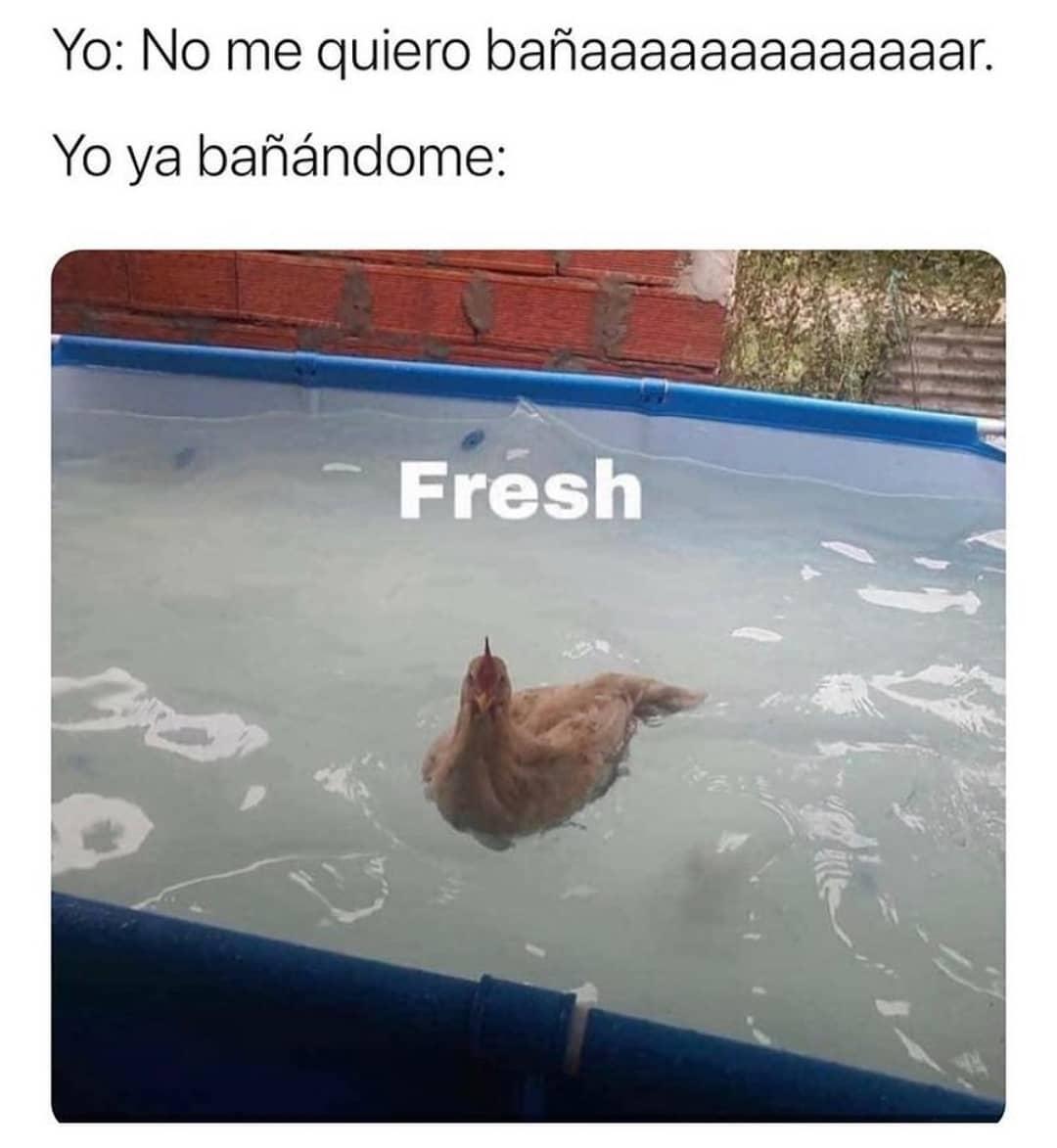 Yo: No me quiero bañaaaaaaaaaaaaac.  Yo ya bañándome: Fresh.