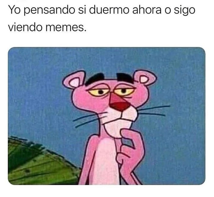 Yo pensando si duermo ahora o sigo viendo memes.