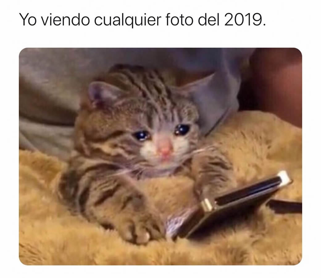 Yo viendo cualquier foto del 2019.