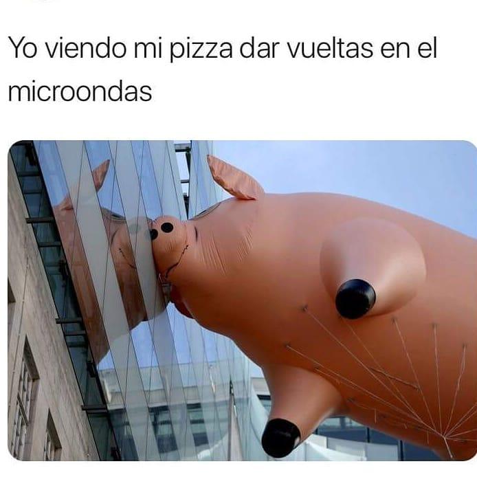 Yo viendo mi pizza dar vueltas en el microondas.