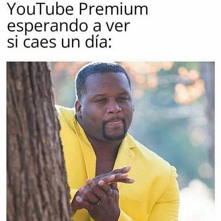 YouTube Premium esperando a ver si caes un día:
